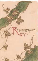 REMEMBRANCE(R illuminated) below cascades of ivy, green design