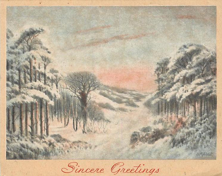 SINCERE GREETINGS snowy path divides trees, sunset