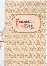 FRIENDS EVER(F & E illuminated) on white plaque set in gilt & leaf design