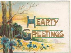 HEARTY GREETINGS (H & G illuminated) over field of wheat, 2 trees left & blue cornflowers
