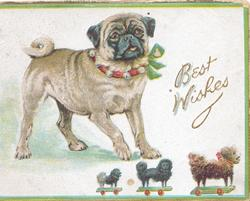 BEST WISHES in gilt, pug dog stands left in red collar & green bow, toy dogs on wheels below, green marginal design
