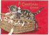 A CHRISTMAS HAMPER in gilt, kitten attempts to close hamper full of puppies, red background