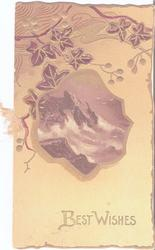 BEST WISHES, gilt ivy grows above inset of rural ocean scene