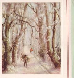 no front title, man walks forward in winter, along rural road thickly lined with trees, carrying holly on his back