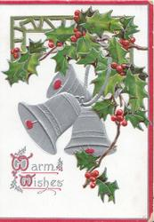 WARM WISHES (W illuminated) in silver below berried holly over perforated widow 3 silver bells