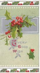 EVERY GOOD WISH(E,G & W illuminated) in silver below berried holly in front of silver design,pale green background, perforated top & bottom design