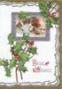 BEST WISHES(B & W illuminated) berried holly above & below silver bordered winter rural inset, buildings,marginal design