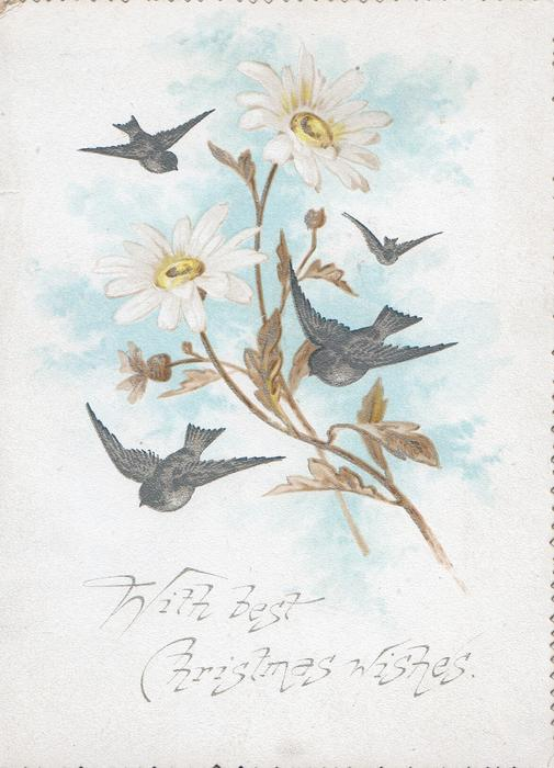 WITH BEST CHRISTMAS WISHES bluebirds of happiness fly around white daisies, flowers & birds also on back