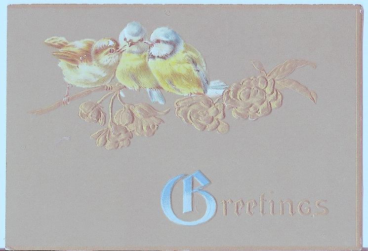 GREETINGS three birds perched on gilt branch