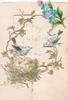 no front title 2 bluebirds of happiness over nest with eggs, stylised flowers , words visible behind large perforation