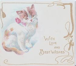 WITH LOVE AND BEST WISHES cat with pink bow to the left of gilt lettering