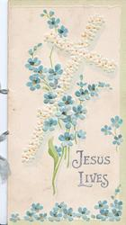 JESUS LIVES in silver, below white embossed cross, forget me nots around, 3 narrow green margins