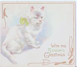 WITH THE SEASON'S GREETINGS cat with green bow to the left of gilt lettering