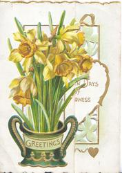GREETINGS in gilt on ornate green vase containing daffodils