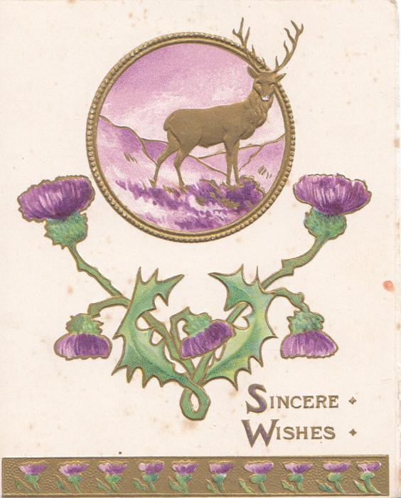 SINCERE WISHES, thistles below gilt margined circular inset, single stag