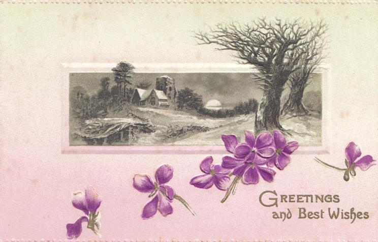 GREETINGS AND BEST WISHES in gilt, below violets & below night view of snowy rural inset, pale pink/pale yellow background