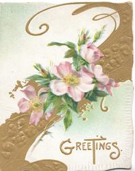 GREETINGS(G & T illuminated) in gilt below pale pink wild roses over complex perforated gilt design