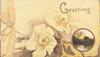 GREETINGS above 2 yellow wild roses & small rural inset,  printed yellow ribbon left