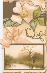 WISHES(W illuminated) in gilt above watery rural inset pale pink wild roses above, pink printed bow