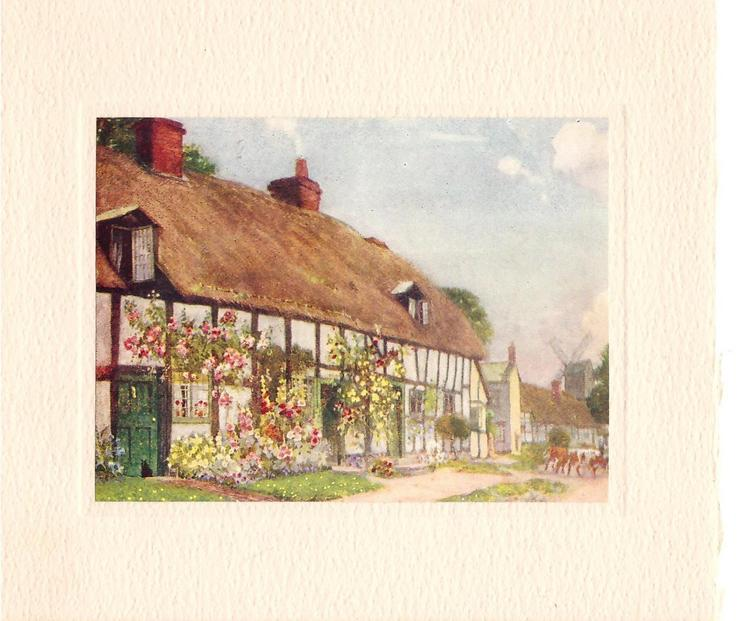 no front title, side view of long cottage with climbing flowers & floral beds, 2 cows mid distance, right