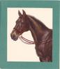 no front title, brown horse with red reins faces left, green borders