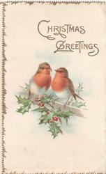 CHRISTMAS GREETINGS in gilt above 2 robins perched above berried holly