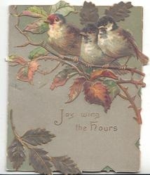 JOY WING THE HOURS below 3 bluebirds-of-happiness perched in blackberry, grey background