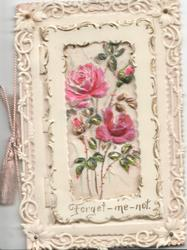 FORGET-ME-NOT at base ol inset of pink roses