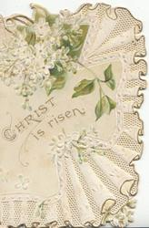 CHRIST IS RISEN below white lilac, elaborate white design