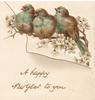 A HAPPY NEW YEAR TO YOU in gilt, 3 bluebirds of happiness  perched on branch among white blossom