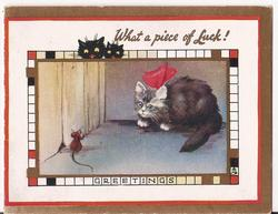 WHAT A PIECE OF LUCK! GREETINGS cat wearing ribbon stares at mouse