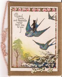 GOOD LUCK AND HAPPINESS WING THEIR WAY TO YOU three blue birds of happiness in flight, cat stands on one of them