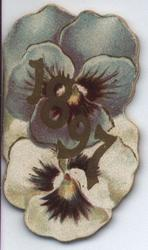 1897 two pansies