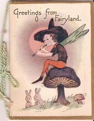 GREETINGS FROM FAIRYLAND fairy sits atop mushroom playing flute, rabbits below