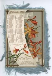 CALENDAR 1885 orange lilies