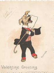 VALENTINE GREETING personized dog in evening dress & top hat bows holding top-0hat & walking stick