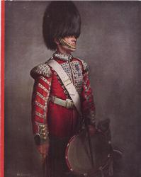 DRUMMER, GRENADIER GUARDS (inside left) guard faces part right, grey background, red stripe left
