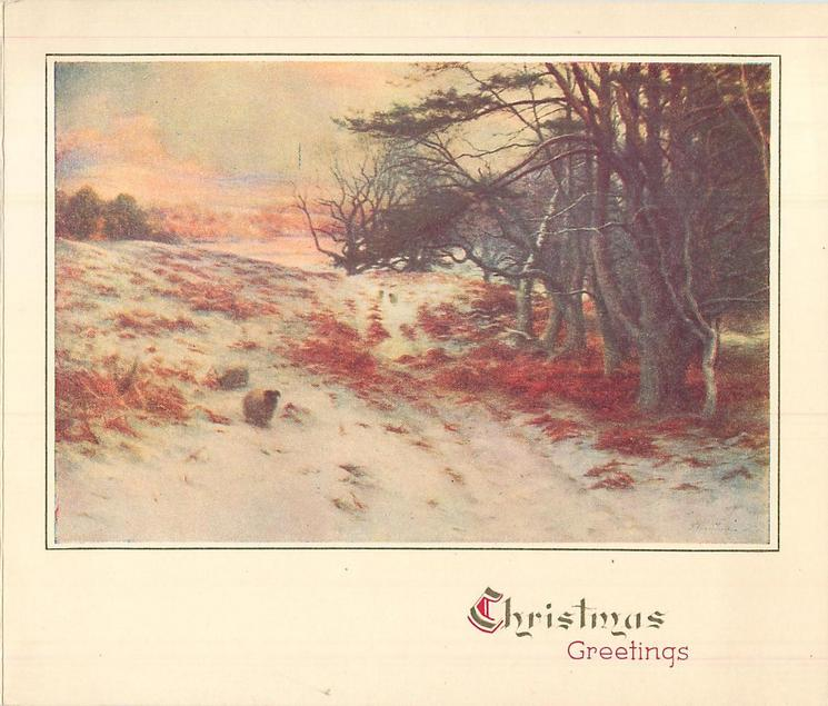CHRISTMAS GREETINGS two sheep on snow covered ground with fallen leaves, trees right