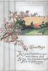 GREETINGS in gilt below rural evening inset, cherry blossom left