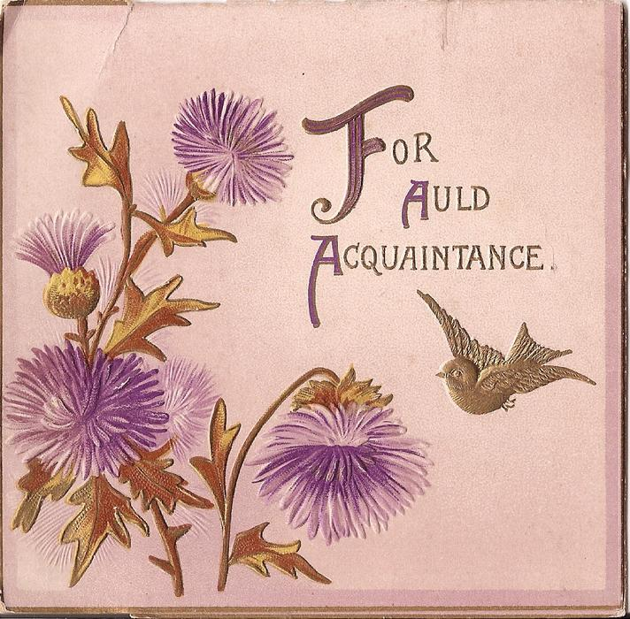 FOR AULD ACQUAINTAINCE gilt bird in flight beside stylised purple thistles