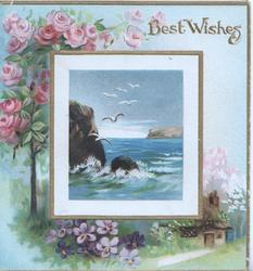 BEST WISHES in gilt above inset of seascape below pink roses, purple pansies below over rural background