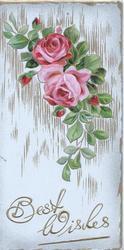 BEST WISHES in gilt below pink roses, gilt marginal & background design