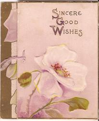 SINCERE GOOD WISHES two poppies