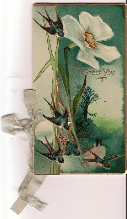 TO GREET YOU five bluebirds in flight in front of exaggerated narcissi