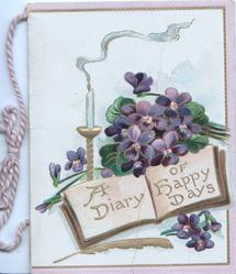 A DIARY OF HAPPY DAYS in gilt on pink pages below violets & candle, 3 pale pink margins