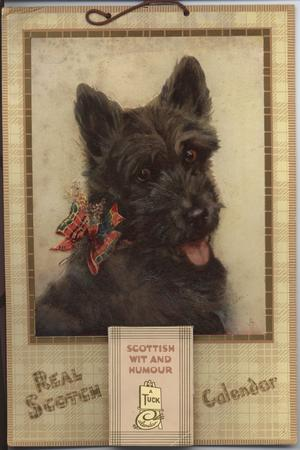 REAL SCOTCH CALENDAR, SCOTTISH WIT AND HUMOUR, scotch terrier