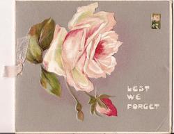 LEST WE FORGET large bloomed pink rose beside budding pink rose