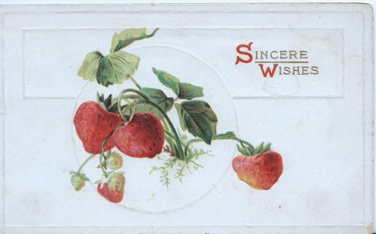 SINCERE WISHES (S & W illuminated) upper right, inset of ripe strawberries