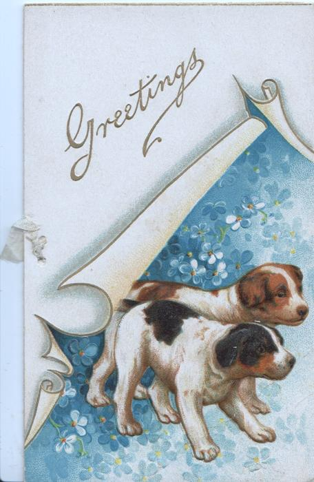 GREETINGS in gilt on plaque above 2 puppies among forget-me-nots
