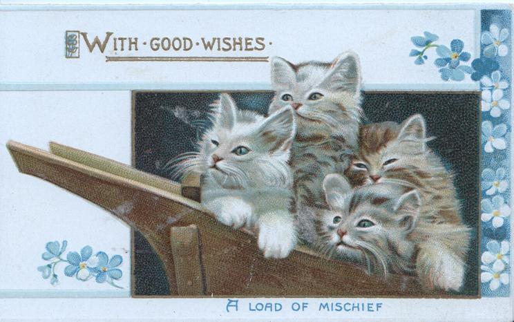 WITH GOOD WISHES in gilt above 4 kittens in wheelbarrow above A LOAD OF MISCHIEF in blue, forget-me-not design